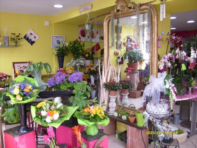 Magasin de fleurs - Boutique et Magasin